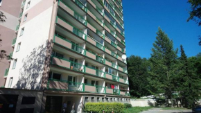 Luxury apartment in center Teplice